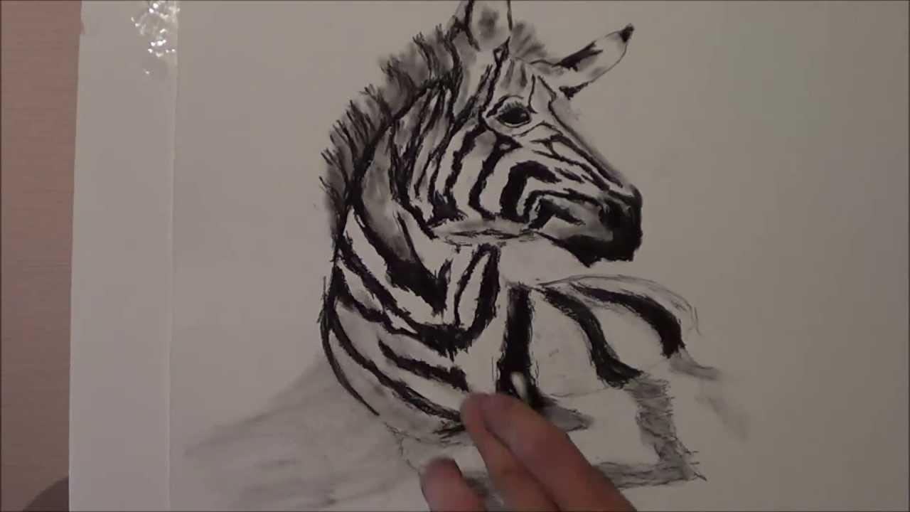 Zebra Drawing Drawing a zebra 3D