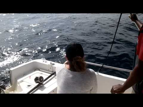 The Laury Kerr Deep Sea Fishing Show Honduras 2013 (BARACCUDA)