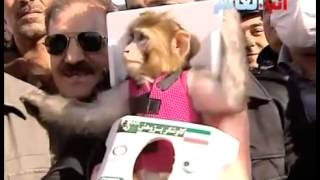 Iran 'sends monkey to space for second time'  (Nasa)