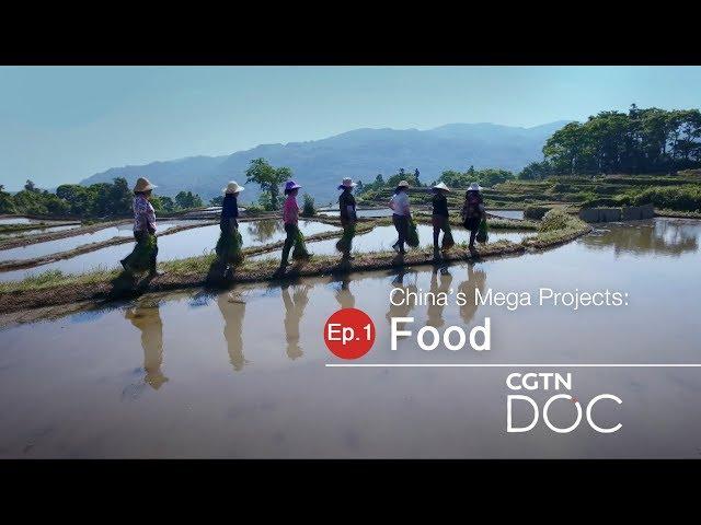 China39s Mega Projects Food
