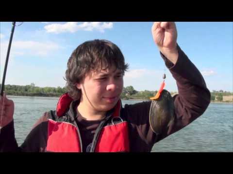 рыбалка с фидером на иртыше