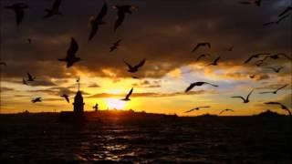 Download Lagu Mesutisci & Mert Onat - Hypogeum (Mara Remix) Gratis STAFABAND