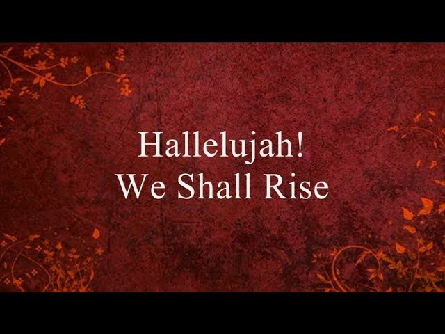 Hallelujah We Shall Rise Lyrics