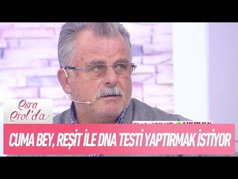 Cuma Bey, Reşit ile DNA testi yaptırmak istiyor! - Esra Erol'da 1 Aralık 2017