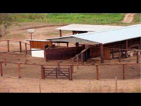Clique e veja o vídeo Curso Instalações e Equipamentos para Pecuária de Corte