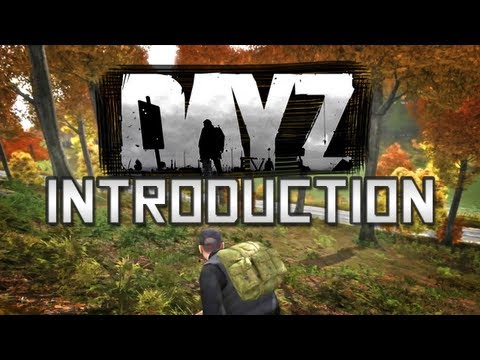 Day Z - An Introduction