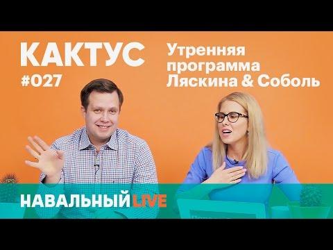 КАКТУС #027. Снос пятиэтажек, штаб Навального в Антарктиде, расследование нападения на мужа Соболь