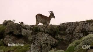 CNN - Breathtaking Views Of Simien Mountains - እጅ በጣም ውብ የሆነ የሰሜን ተራራ እይታ