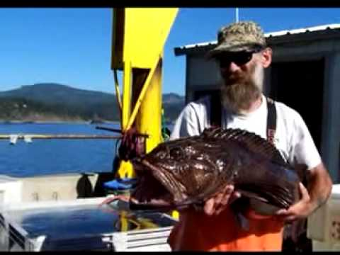 0 Port of Port Orford Oregon   Recreational and Commercial Fishing for over a Century