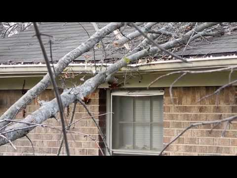 Ice Storm Damage in Aiken, SC