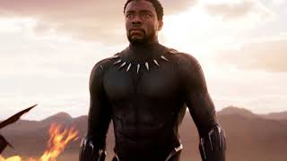 'Black Panther' Earns A Historic $242 Million Opening Weekend
