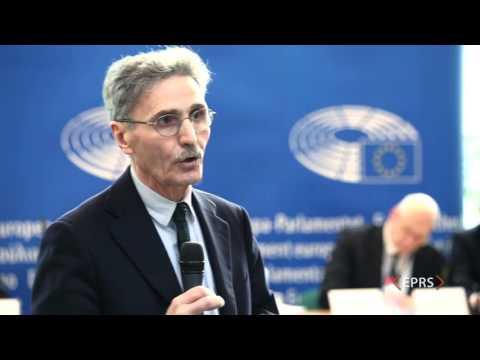 What kind of European political system?, Presentation by Sergio FABBRINI, 24 February 2016