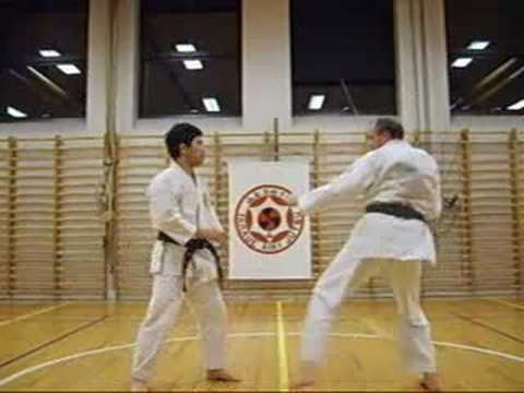 Aikijutsu training 9 Image 1