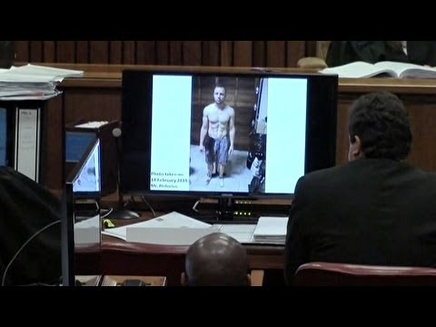 Photo Shows Pistorius Drenched In Blood: Day Ten Of Trial