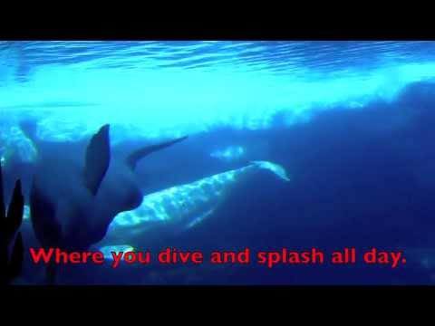 Baby Beluga Song - Lyrics - Children's Nursery Rhyme
