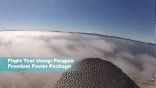 GSTV - Penguin - FPV Power Combo Flown