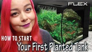 Beginners Guide to Planted Tanks | Fluval Flex Aquarium Setup