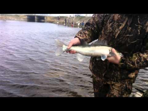 в марте рыбалка в бриньковской