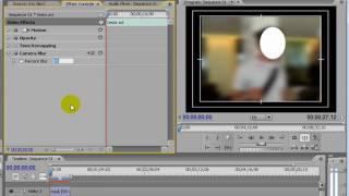 Vídeo 8 de Seppia