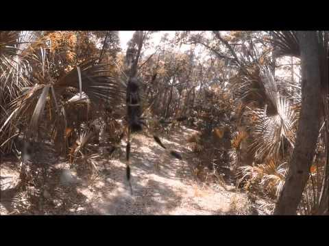 Botany Bay, South Carolina -GoPro Edition
