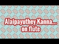 Alaipayuthey Kanna... on flute and violin | Carnatic Music