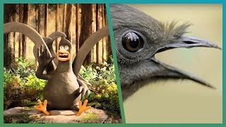 Lyrebird Meets Attenborough ft. Aardman Animations #Attenborough90 | BBC Earth Unplugged