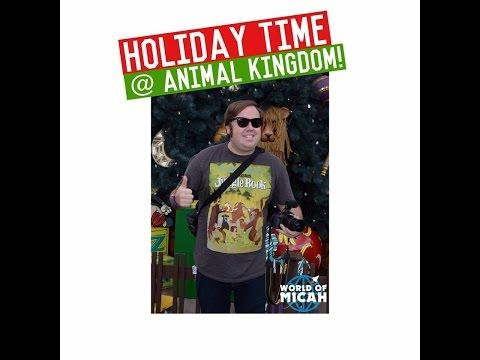 Holiday time at Disney's Animal Kingdom (WORLD OF MICAH)