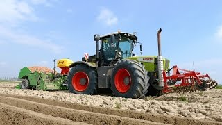 Planting potatoes using a 380 HP Claas Xerion 3800 & Miedema CP42 cup planter | NIVU Achthuizen