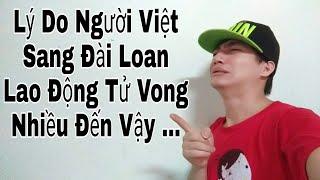 Cuộc sống đài loan 11 - lý do người Việt sang Đài Loan lao động ngẻo...nhiều vậy - trương đình đại