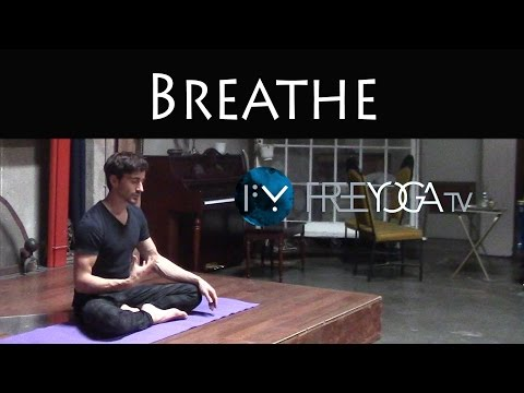 Breathe | Beginner Yoga Class | Free Yoga
