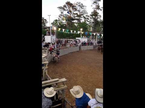monta de el  gallo de Zacatecas en la Villarreal.