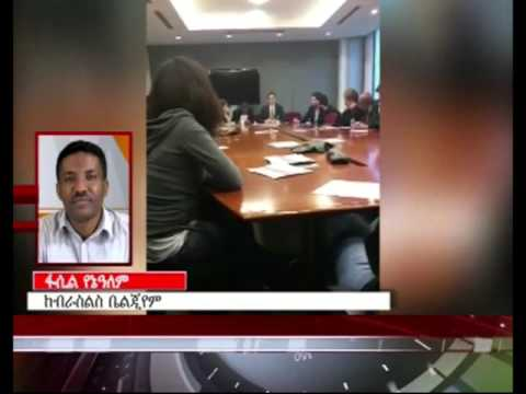 Prof. Berhanu Nega in Brussels, EU meeting (ESAT News)