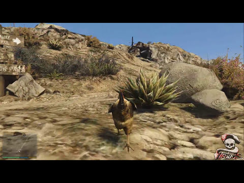 GTA V PS4/XBOX ONE | TRANSFORMARSE EN ANIMALES LOCALIZACION PEYOTE 1/27 EASTER EGG | XxStratusXx