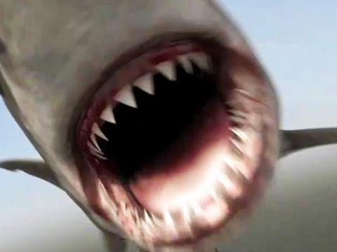 Mega Shark vs. Crocosaurus is listed (or ranked) 35 on the list The Best Shark Movies