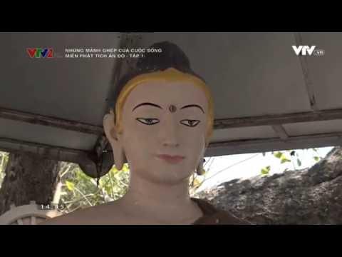 Những miền Phật tích Ấn Độ