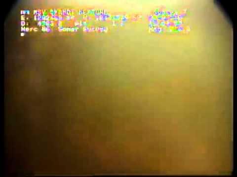 Deepwater Horizon oil spill 28th July 2010