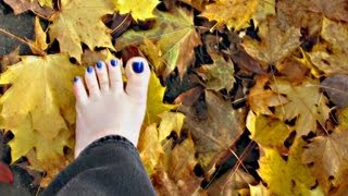 Barefoot Journey Fall Leaves