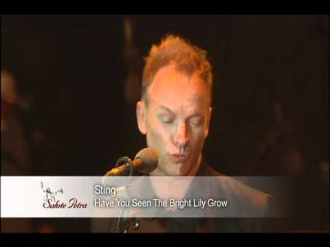 Sting - Have You Seen The Bright Lily Grow