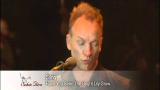 Watch Sting Have You Seen The Bright Lily Grow video