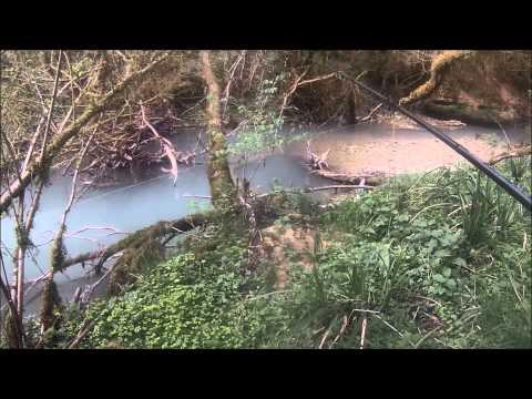 pêche de la truite au toc au ver