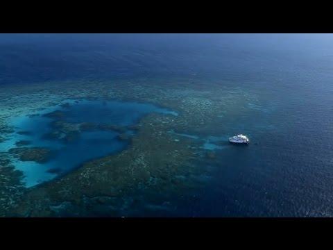Reef Rescue - Partnerships - Great Barrier Reef