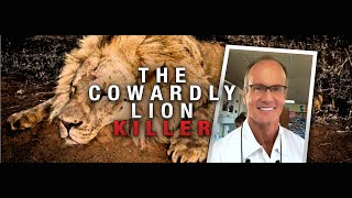 Beloved Lion Killed By American Dentist
