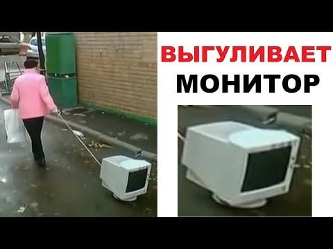 Лютые приколы. Бабка выгуливает МОНИТОР !!!!