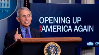 Extended lockdowns could cause 'irreparable damage': Dr Fauci