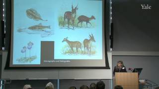 Art of Nature, Nature of Art Conference