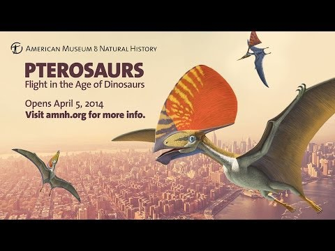Pterosaurs: Flight in the Age of Dinosaurs Now Open