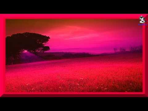WATHSALA - Mariazelle 720P HD (((STEREO)))