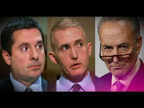 Schumer Attempts to BLOCK Nunes and Gowdy From Viewing Unredacted FBI Spy Docs
