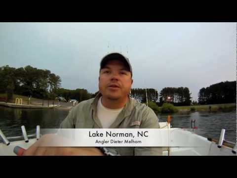 Trolling For Catfish On Lake Norman