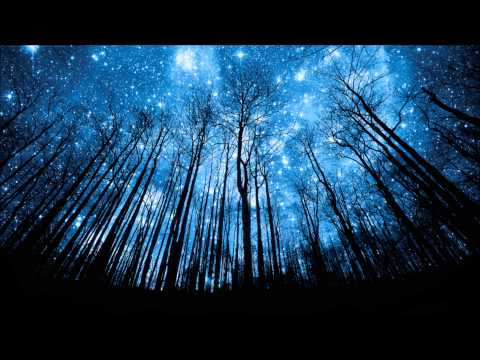 Van Morrison - In The Forest